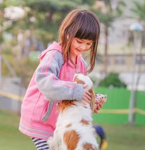The Benefits Of Having a Dog For Children