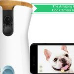 The Amazing Dog Camera Review
