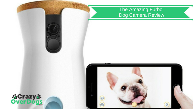 The Amazing Furbo Dog Camera and Treat Dispenser