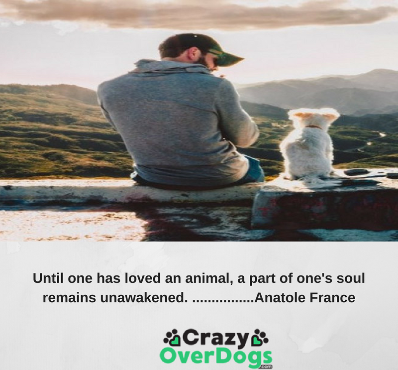 Inspirational Dog Quotes - Until one has loved an animal a part of one's soul remains unawakened - Anatole France