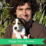 doggy dans review