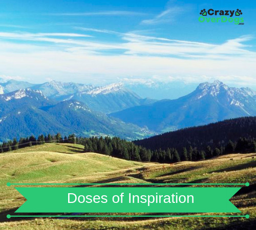 Doses of Inspiration