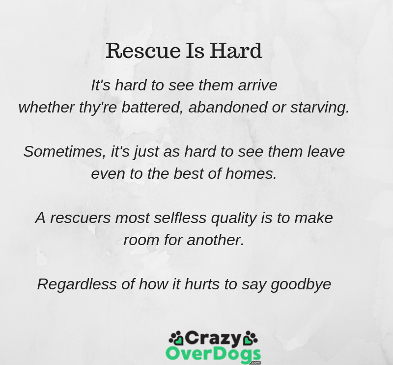 Rescue Is Hard Poem