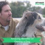 amazing benefits of owning a dog