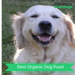 Best Organic Dog Food