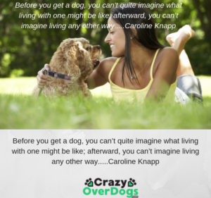 """Before you get a dog, you can't quite imagine what living with one might be like; afterward, you can't imagine living any other way."""" – Caroline Knapp"""