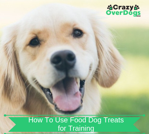 how to use food treats for training