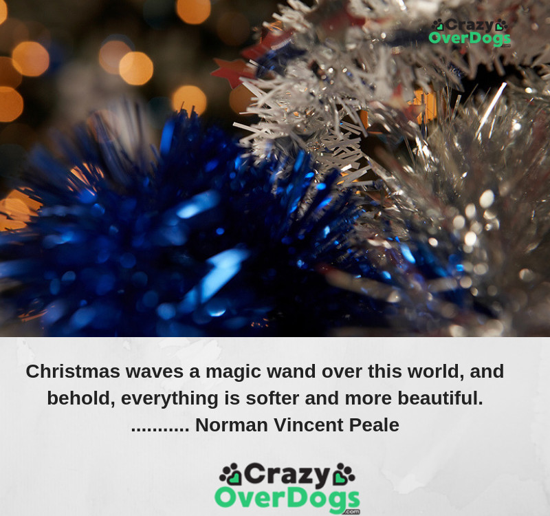 Christmas waves a magic wand over this world, and behold, everything is softer and more beautiful...Norman Vincent Peale