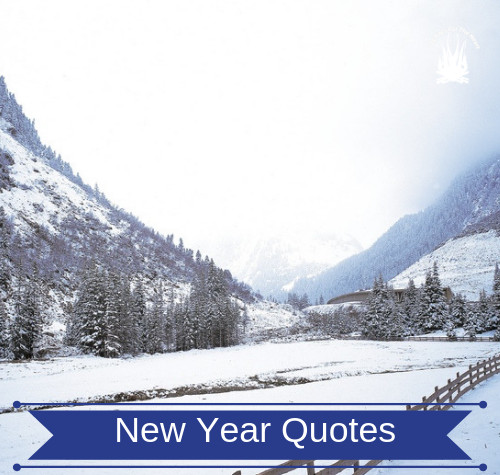 new year inspirational quote for dog lovers