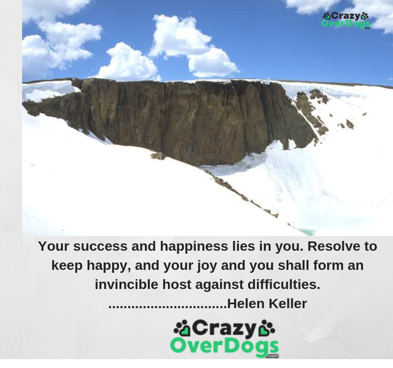 Your success and happiness lies in you. Resolve to keep happy, and your joy and you shall form an invincible host against difficulties............. Helen Keller