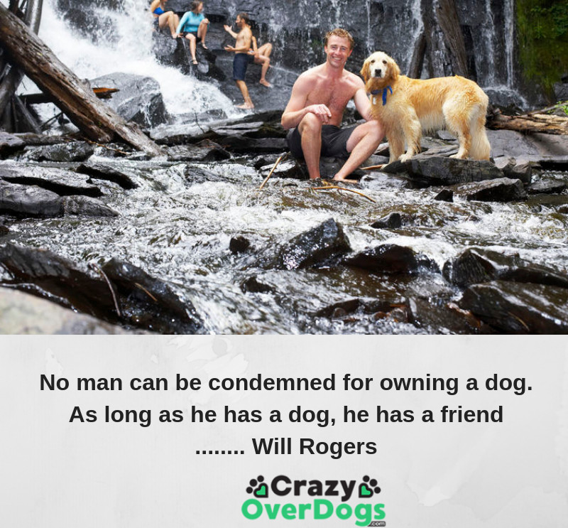 No man can be condemned for owning a dog. As long as he has a dog, he has a friend ........ Will Rogers