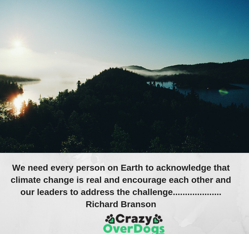 Eco Friendly Dog Products - We need every person on Earth to acknowledge that climate change is real and encourage each other and our leaders to address the challenge............Richard Branson