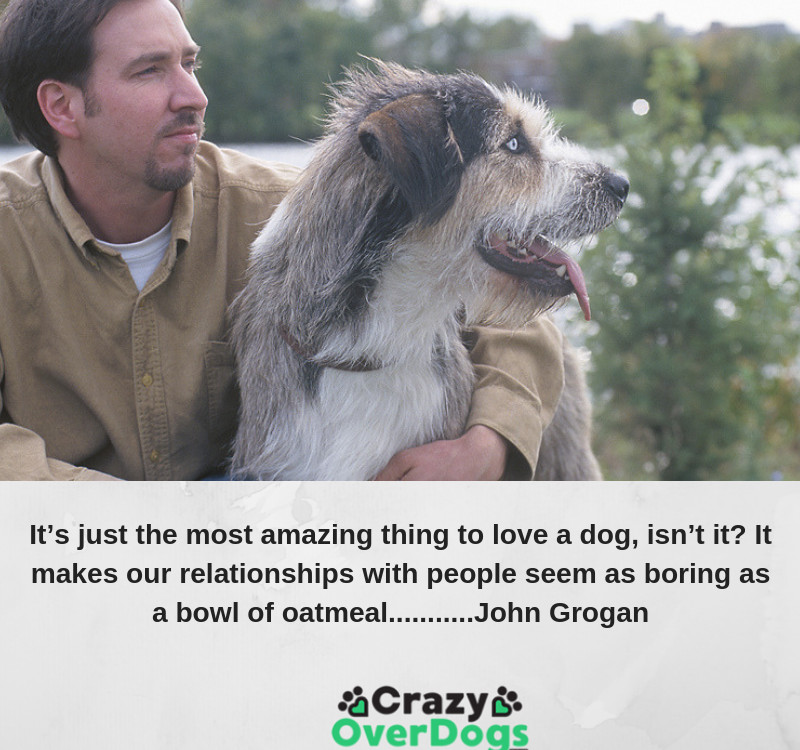 It's just the most amazing thing to love a dog, isn't it? It makes our relationships with people seem as boring as a bowl of oatmeal....... John Grogan