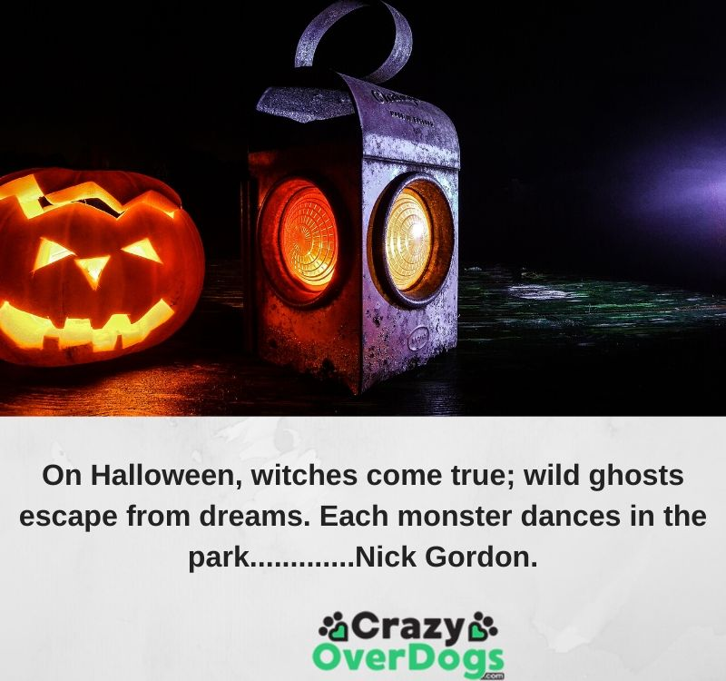 On Halloween, witches come true; wild ghosts escape from dreams. Each monster dances in the park.............Nick Gordon.