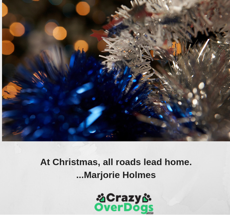 At Christmas, all roads lead home. - Marjorie Holmes