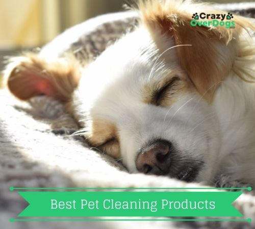 best pet cleaning products