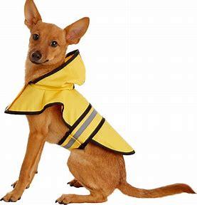 Ethical Pet Fashion Rainy Days Slicker Raincoat, Yellow