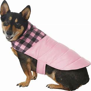 Frisco Boulder Dog & Cat Puffer Coat