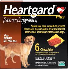 Best Heartworm Prevention For Dogs - Heartgard Plus Chewable Tablets for Dogs, 51-100 lbs: