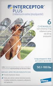 Best Heartworm Prevention For Dogs - Interceptor Plus Chewable Tablets for Dogs, 50.1-100 lbs, 6 treatments