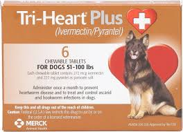 Best Heartworm Prevention For Dogs - Tri-Heart Plus Chewable Tablets for Dogs, 51-100 lbs: