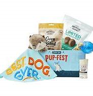 Best Gifts For Dog Lovers - Goody Box Birthday Toys