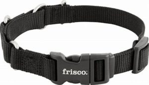 best new dog products - dog Collar
