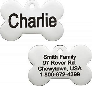 dog tags - GoTags Personalized Stainless Steel ID Tag, Bone