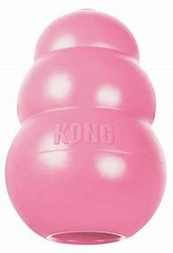 Interactive dog toys - KONG Puppy Dog Toy: