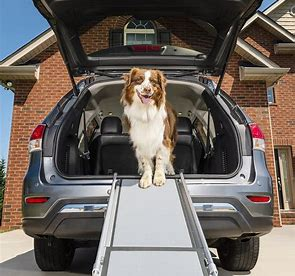 best new dog products - Pet Ramp: