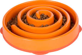 best dog bowls and dog feeders
