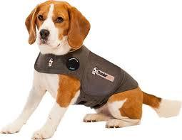 dog calming aids