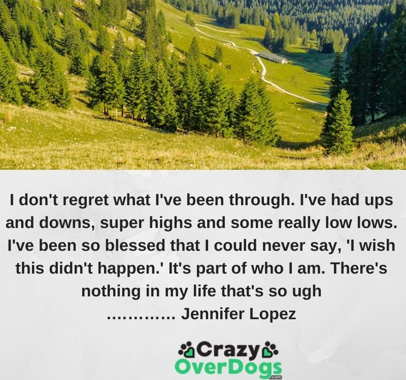 I don't regret what I've been through. I've had ups and downs, super highs and some really low lows. I've been so blessed that I could never say, 'I wish this didn't happen.' It's part of who I am. There's nothing in my life that's so ugh.………… Jennifer Lopez