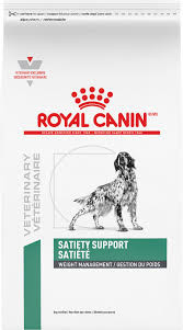 Best Skin and Coat Supplements For Dogs