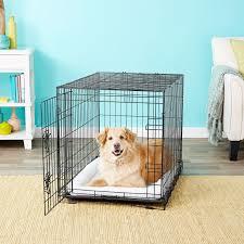 Best Puppy Sleep Training Products