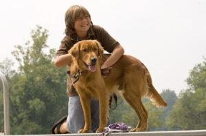 Longest Lasting Dog Chews