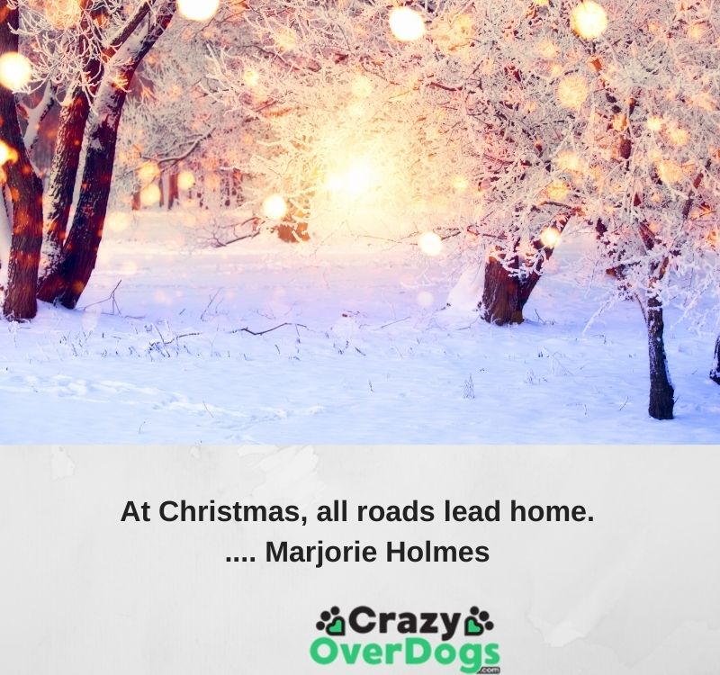 At Christmas, all roads lead home..... Marjorie Holmes.