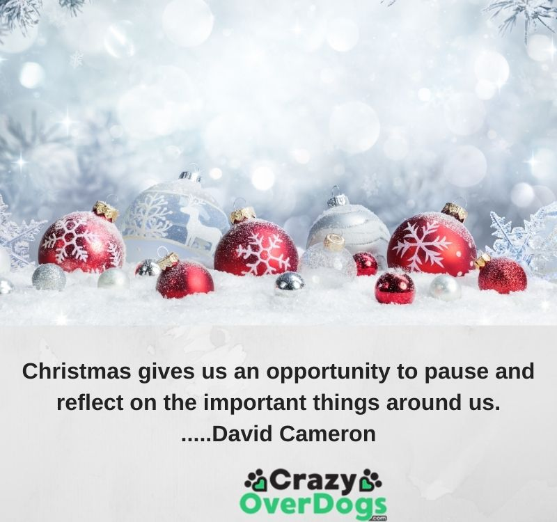 Christmas gives us an opportunity to pause and reflect on the important things around us......David Cameron