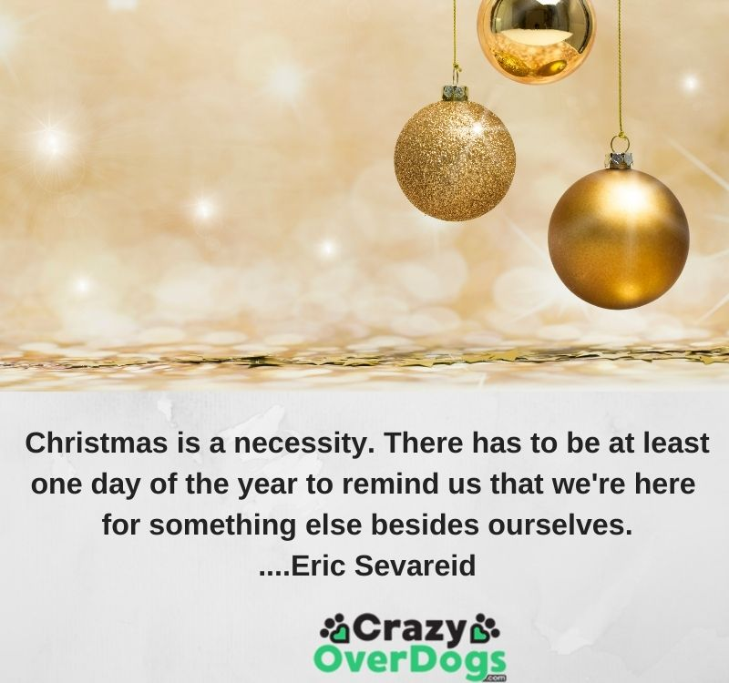 Christmas is a necessity. There has to be at least one day of the year to remind us that we're here for something else besides ourselves...Eric Sevareid