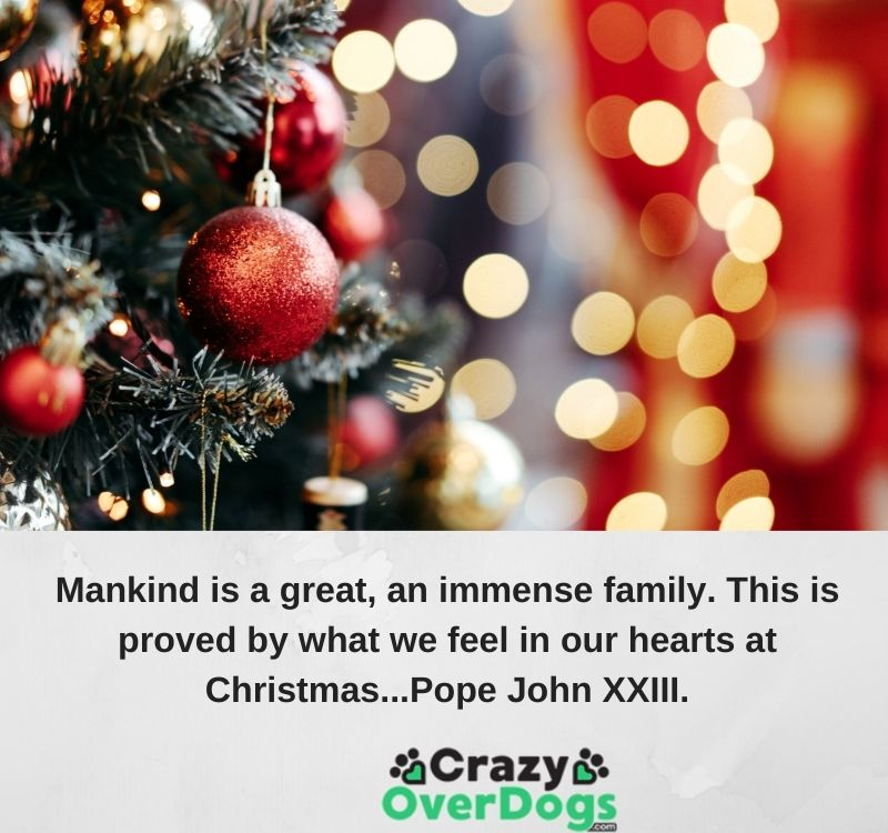 inspirational christmas quotes - Mankind is a great, an immense family. This is proved by what we feel in our hearts at Christmas...Pope John XXIII.