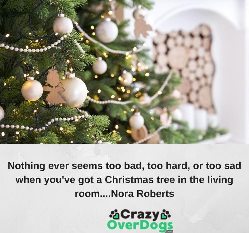 best christmas quotes - Nothing ever seems too bad, too hard, or too sad when you've got a Christmas tree in the living room.....Nora Roberts.