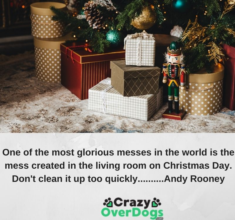 One of the most glorious messes in the world is the mess created in the living room on Christmas Day. Don't clean it up too quickly..........Andy Rooney