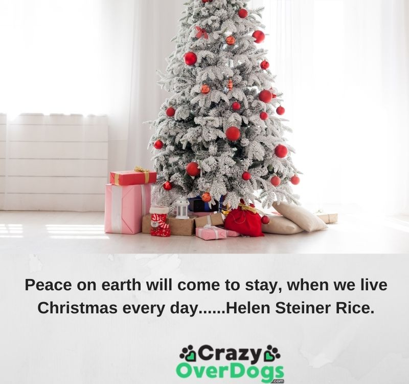 Peace on earth will come to stay when we live Christmas every day......Helen Steiner Rice.