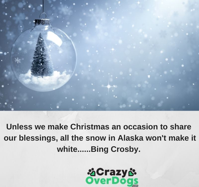 Unless we make Christmas an occasion to share our blessings, all the snow in Alaska won't make it white......Bing Crosby.