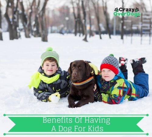 benefits of having a dog for kids
