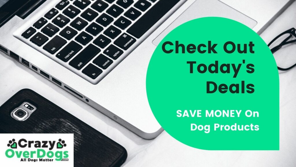 check out todays deals for dog products