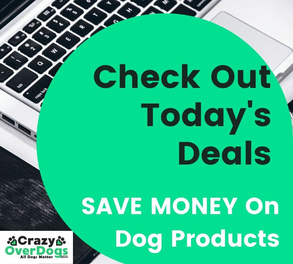 Check Out Todays Deals and SAVE Money on Dog Products
