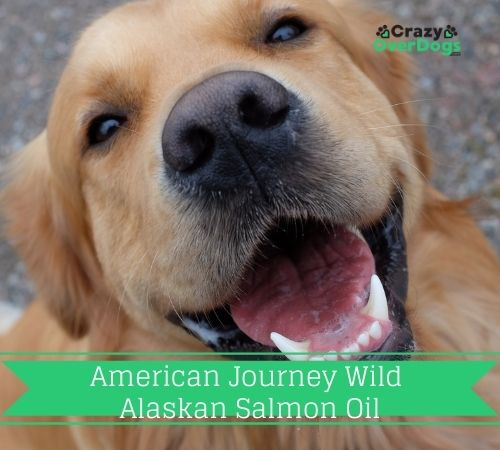 American Journey Wild Alaskan Salmon Oil Liquid Dog Supplement