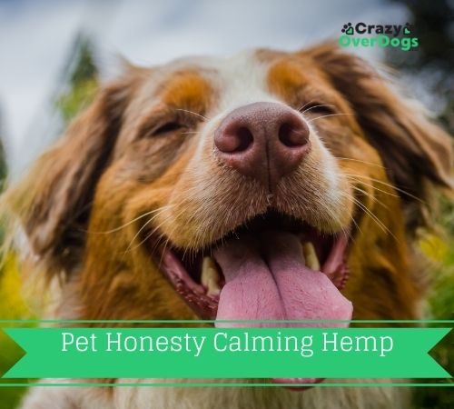 Pet Honesty Calming Hemp